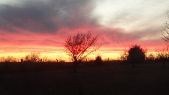 sunset 12-28 2